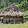 11-04-png-grass-hut-round