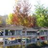 Mailbox - just beautiful Autumn